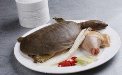七夕节过后如何补肾 推荐八种最佳食物